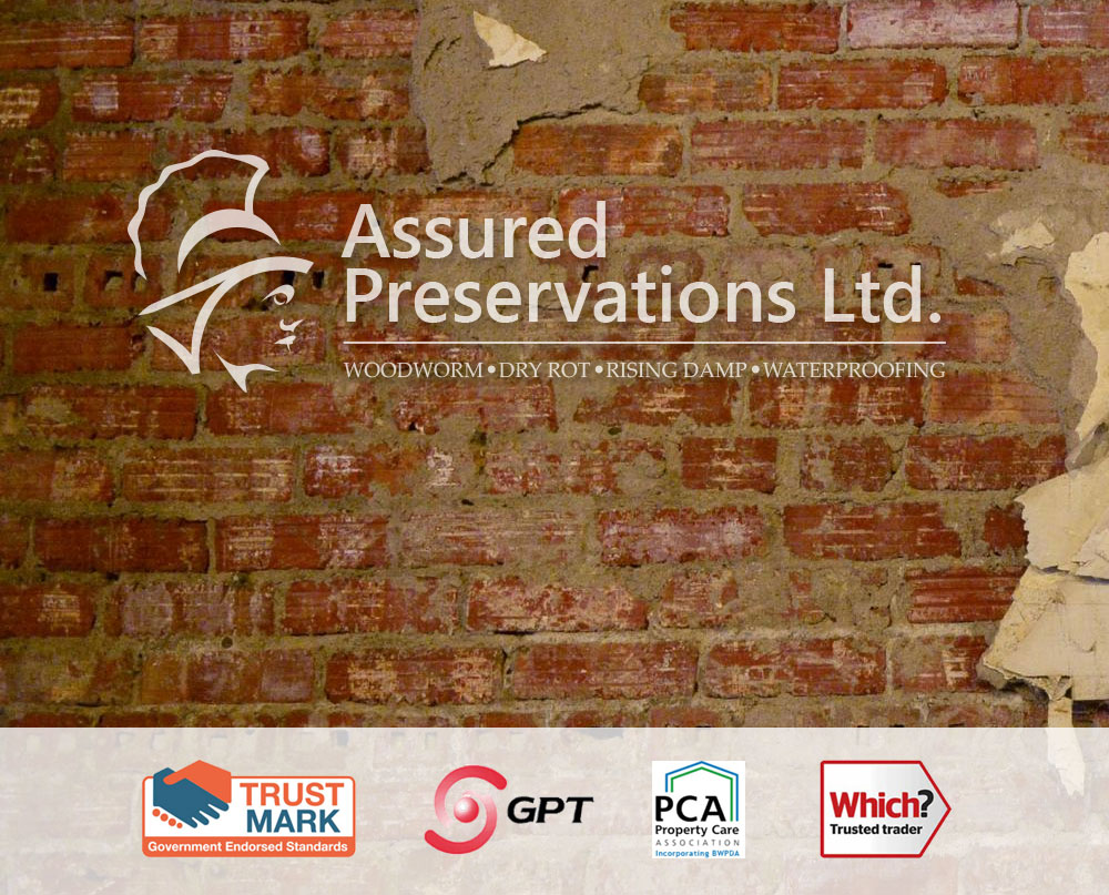 damp proofing croydon